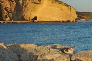 Sciacca, Sicily 184