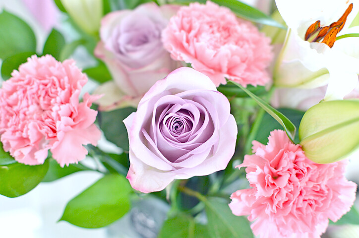 rosesdebenhams