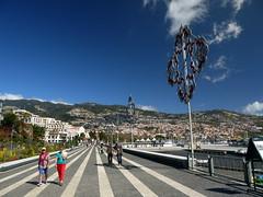 A Wander Around Funchal