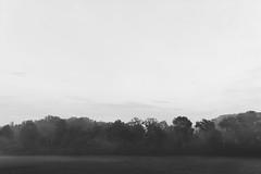 Awakening Mist