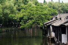 Water Village, Wuzhen, China.