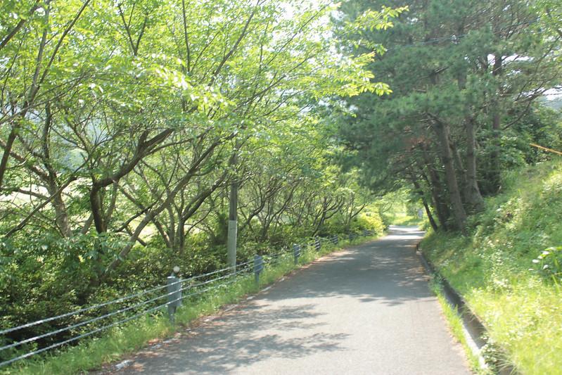 20140531-開聞岳-0228.jpg