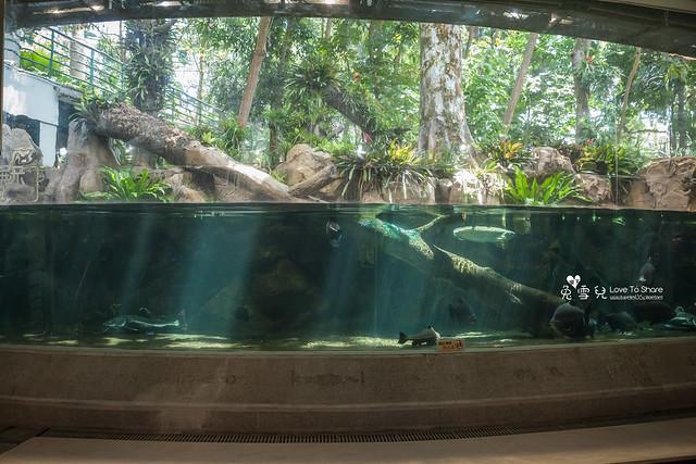 台中一日遊-台中自然科學博物館-台中植物園