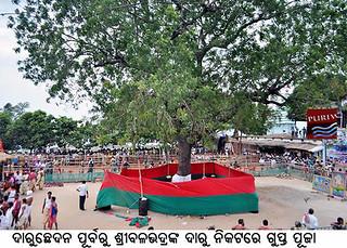 Gupta Puja Before Daru Chedan ( elling of holy Neem tree) of Lord Balavadra Daru