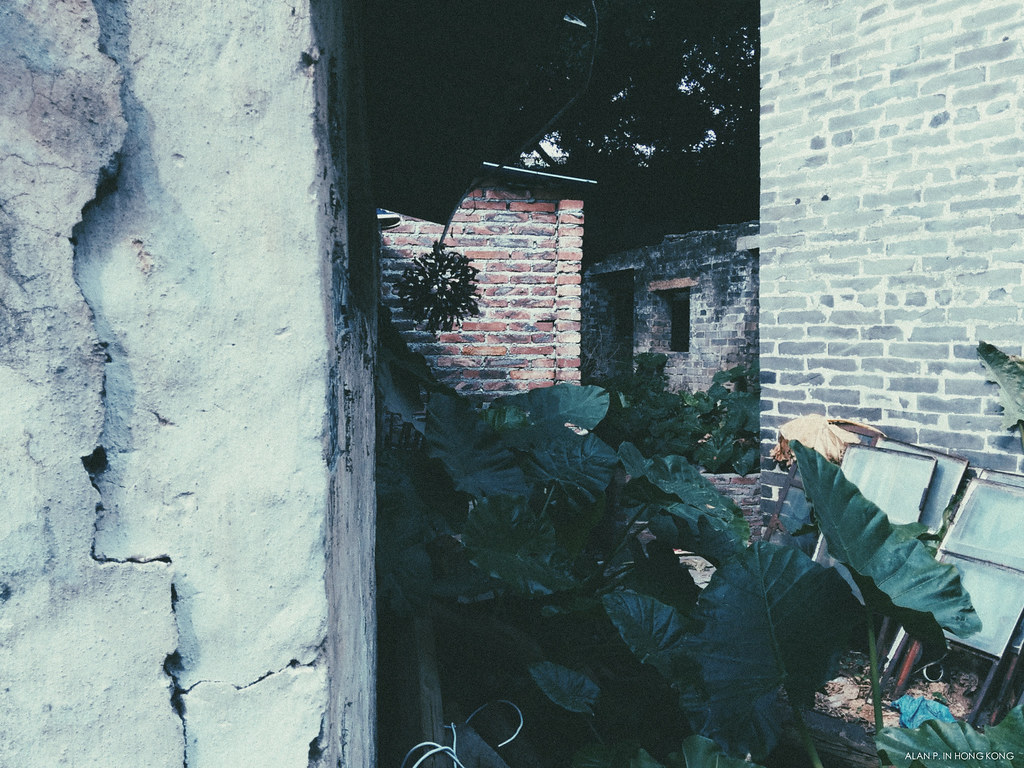 Through the abandoned brickhouses