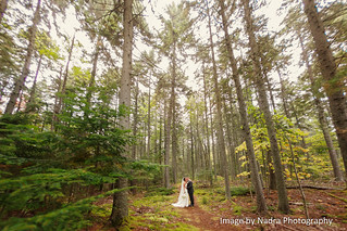 Spruce Point Inn Weddings