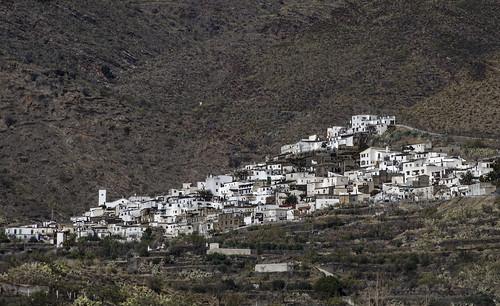 Senés(Almería), _DSC4471