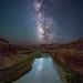Colorado River in Canyonlands National Park by Wayne Pinkston