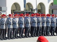 25 Jahre Panzergrenadierbrigade September 2016