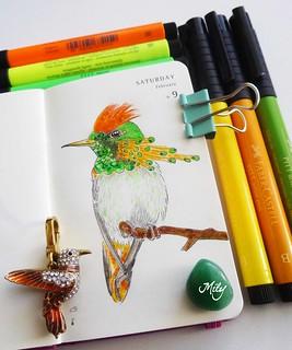 Colibrí- Hummingbird : )