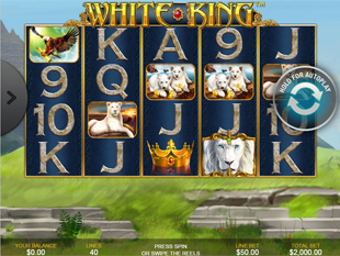 White King Mobile slot game online review