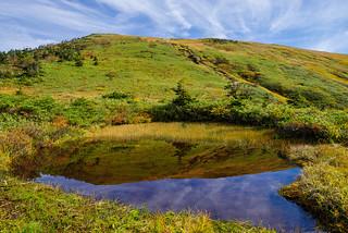 草紅葉の山肌を映す池塘