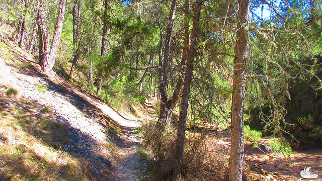 2015_04_04_Cañón del Río Lobos_052