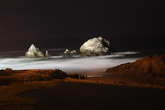 Shores of Sutro Baths
