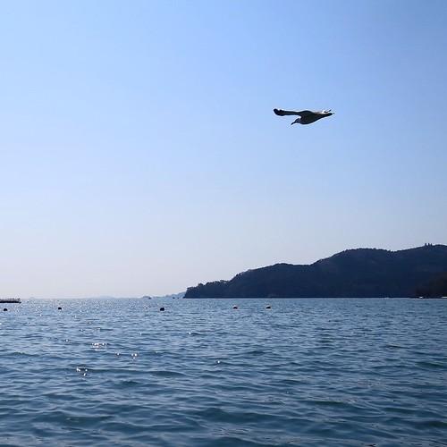 雄勝湾の海