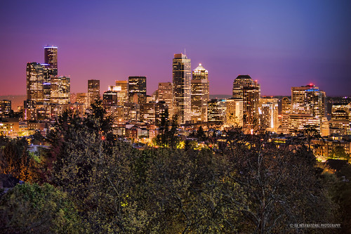 seattle city blue sunset urban building tree skyline skyscraper forest tia landscape golden evening washington spring downtown cityscape view pacific northwest centre hill illumination center foliage capitol hour sound vista region puget springtime tosinarasi ©tiainternationalphotography