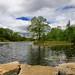 Montreal, l'étang du parc Angrignon