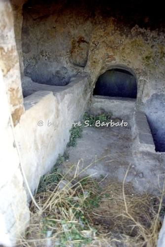 Pietragalla (PZ), 1996, Borgo dei Palmenti.