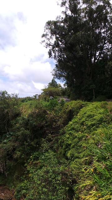 Makapipi Hill