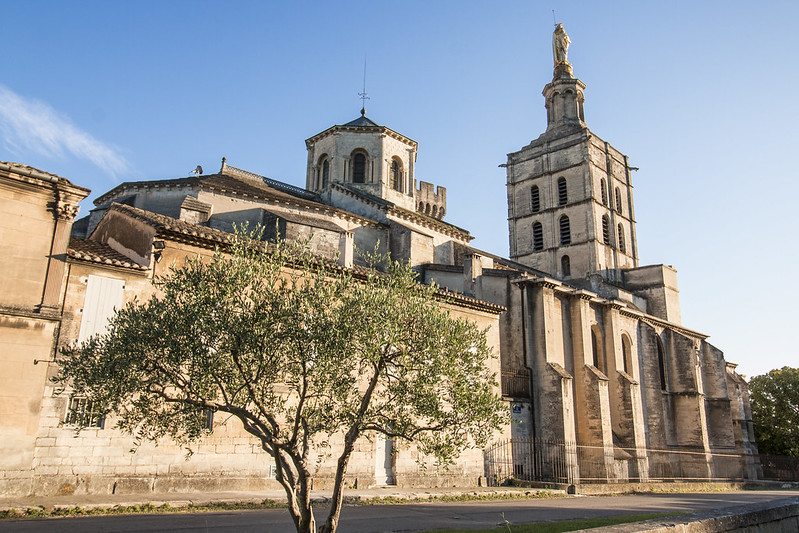 Provence cyling Avignon cathedral