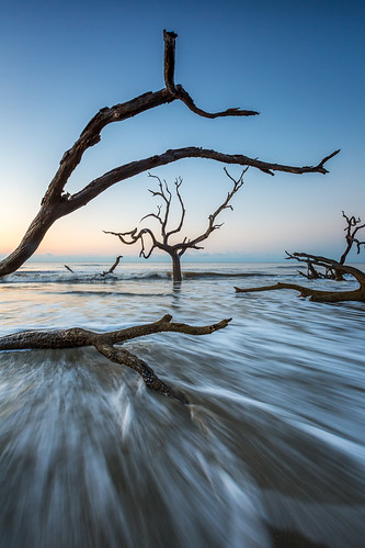 ocean morning sea seascape sunrise dead southcarolina charleston bullisland liveoaks bullsisland discoversc