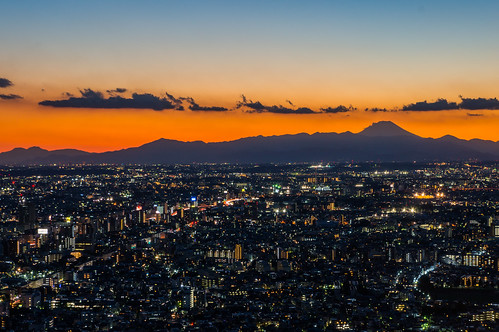 Landscape from the Tokyo Metropolitan Government (sunset and Mt. Fuji)