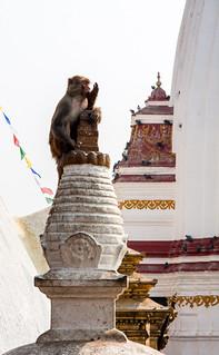 Image of Swayambhunath near Kathmandu. stupa temples singe mg4745