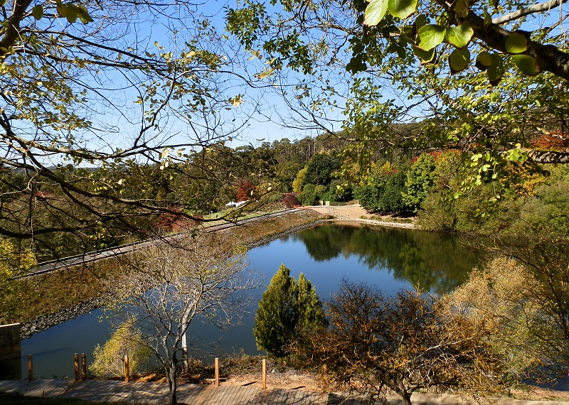 Mount Lofty Botanic Gardens Lake from above