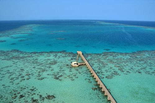 africa redsea sudan lagoon sanganeb sanganeblagoon