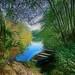 « Le spectacle de la nature est toujours beau. »  Aristote by Gérard Marconnet