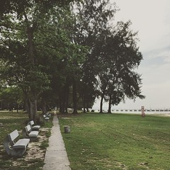 Green and grateful. #running #singapore #laborday