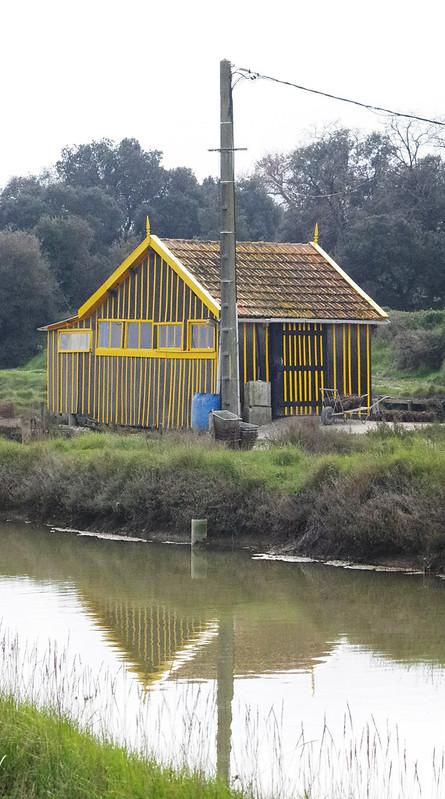 Cabane Ostréicole Jaune en reflet