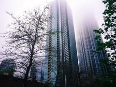 Foggy Loop skyscrapers