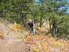 2016-07-23 surveyors ridge 020
