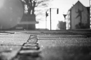 Pavement_photobomber