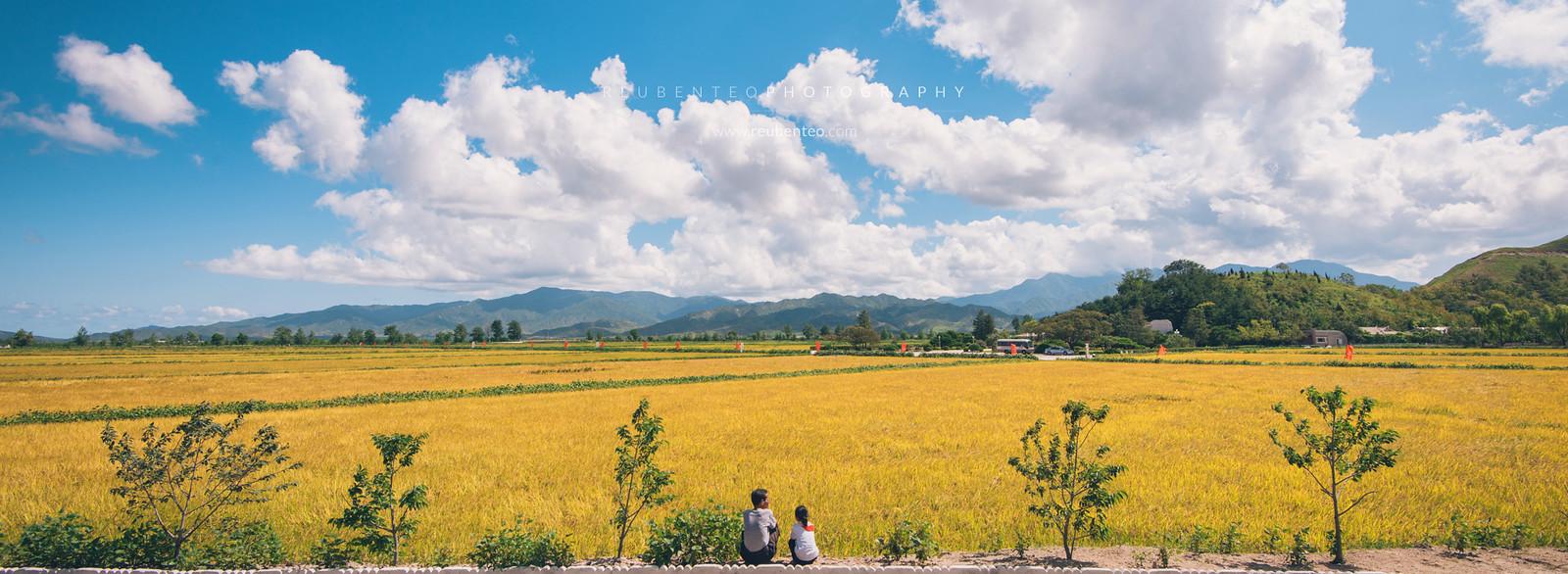 Pyongyang Farm