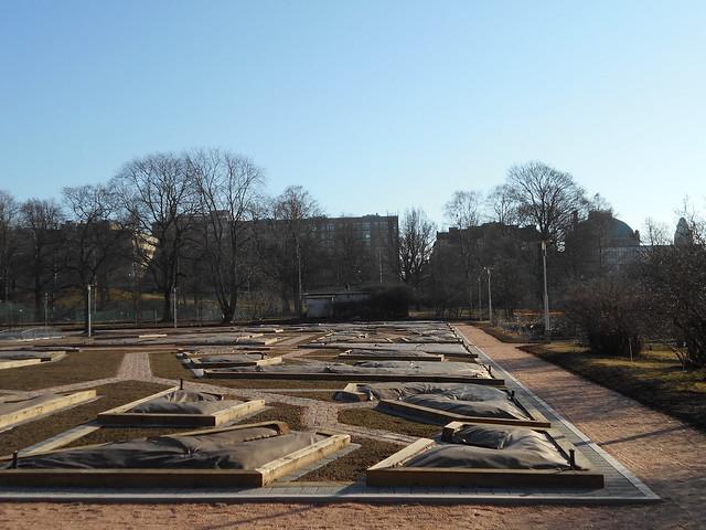 Helsingin Kaisaniemen kasvitieteellisen puutarhan remontti - Tilannetta 19.3.2015 C