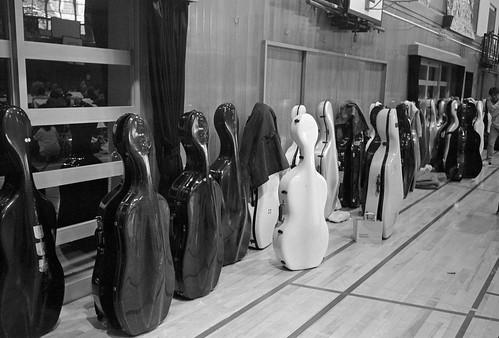 Cello Cello Cello...
