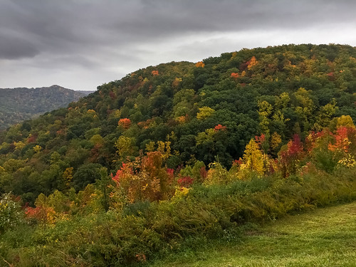 autumn mountain tree fall all westvirginia 2014 birchriver