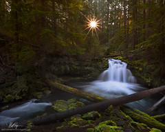 Morning Breaks at Whitehorse Falls