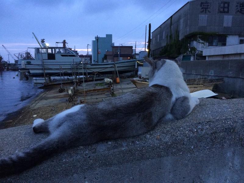 2014-08-15-akashi016