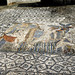 Volubilis: House of Venus, eponymous mosaic, 8