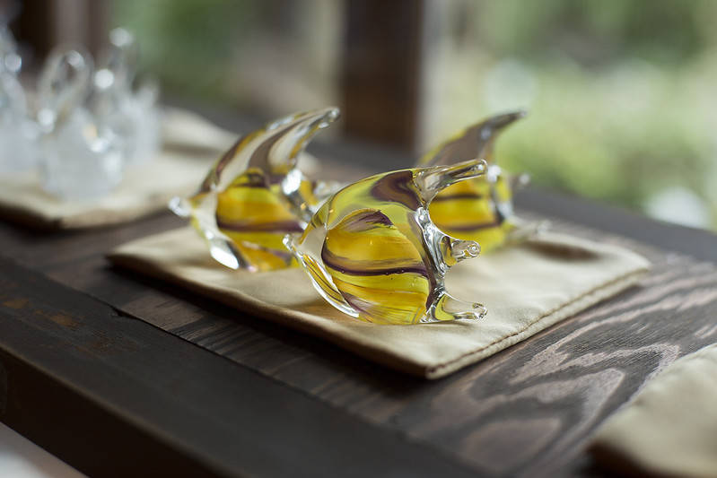 Glass fishes