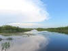 Reflections of Everglades