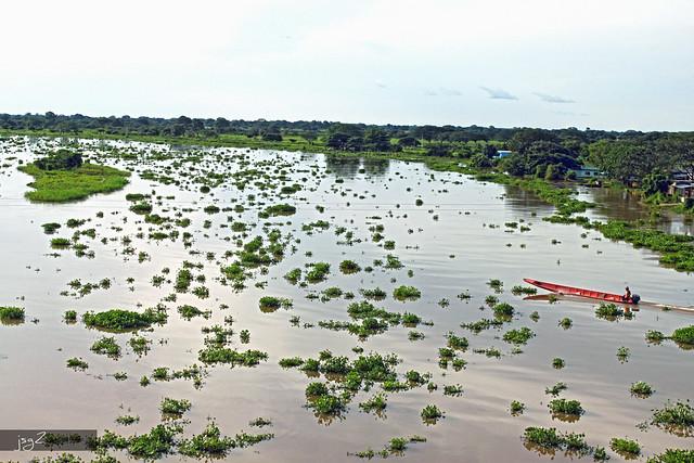 Río Arauca - Cajón de Arauca (Edo. Apure)