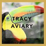TRACYAVIARY