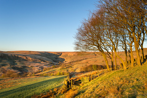 uk morning trees light england colour tree sunrise naked landscape gold dawn golden morninglight spring nikon northwest britain bare hill lancashire hills valley moors dslr moor magichour goldenhour pennines moorland rossendale helmshore haslingden d3200 musbury musburyvalley