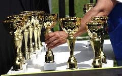trophy,