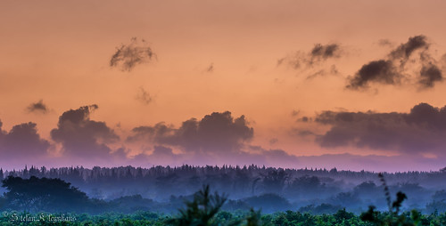morning blue orange mist color green clouds sunrise landscape southafrica 50mm early nikon purple hoedspruit limpopo d7100