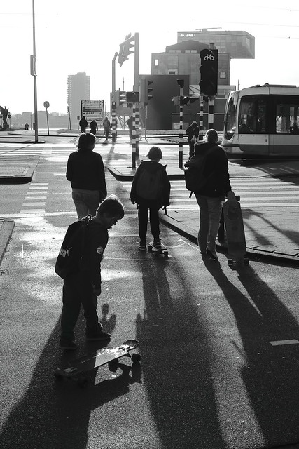 Rotterdam Impressions